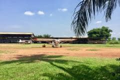 Lady Bush Pilot - African Tour - Flap 5
