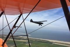 Lady Bush Pilot - Neighbors Trip