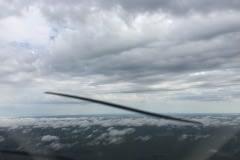 Lady Bush Pilot - Flap 5