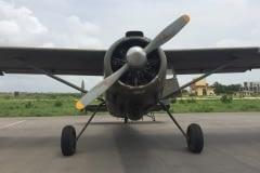 Lady Bush Pilot - African Tour - Flap 6